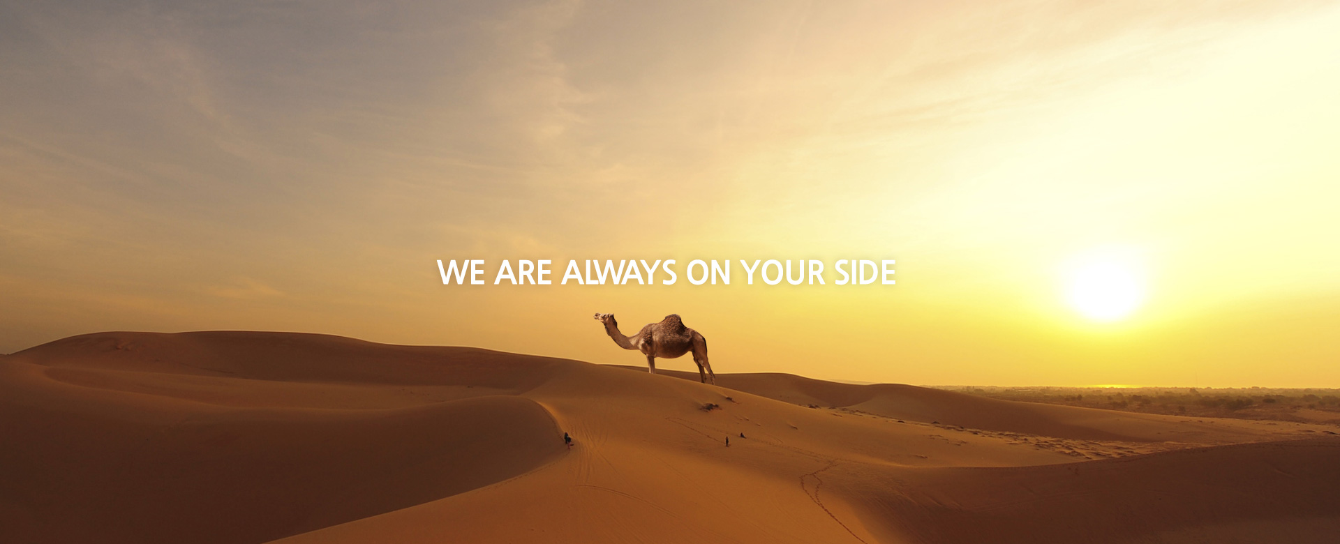 We are always on your side